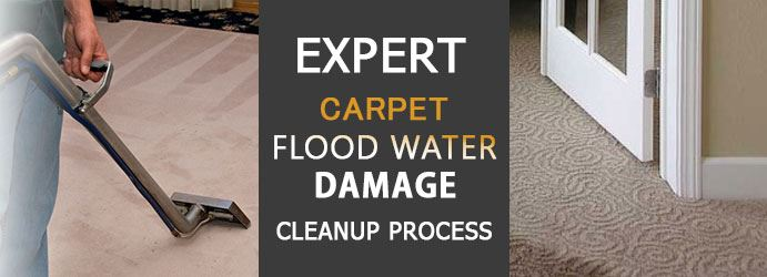 Expert Carpet Flood Water Damage Cleanup Process Vermont Estate