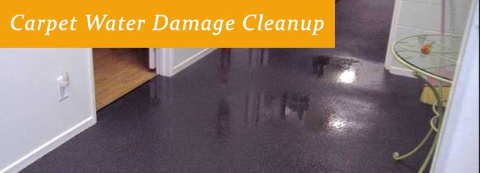 Expert Carpet Water Damage Eden Park