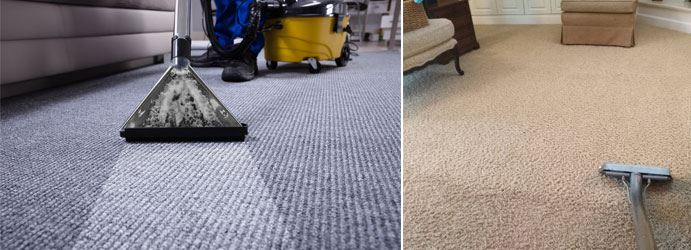 Professional Carpet Cleaning Hallora