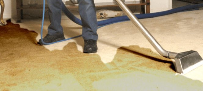Remove Flood Water from The Carpet